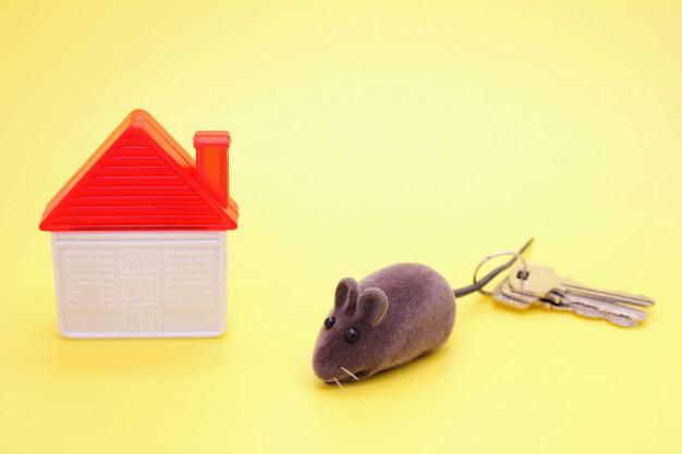 Souscrire une assurance pour un investissement immobilier locatif